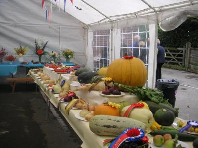 Entries for Vegetable Competition at Autumn Show